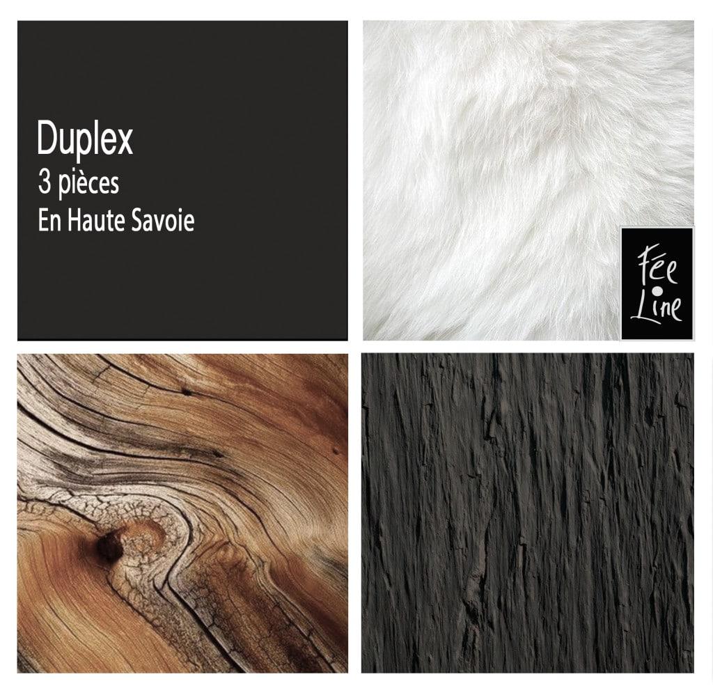 duplex-carroz1